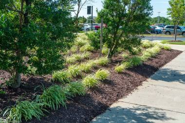 Commercial Landscape Maintenance in Glenwood, MD