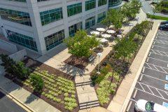 Landscape Maintenance in Ellicott City