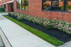 Hardscaping in Dayton, MD