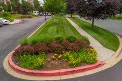 Commercial Landscape Maintenance in Dayton, MD