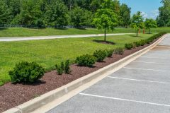 Landscape Design in Dayton, MD