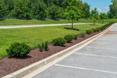 Landscape Design in Dayton, MD