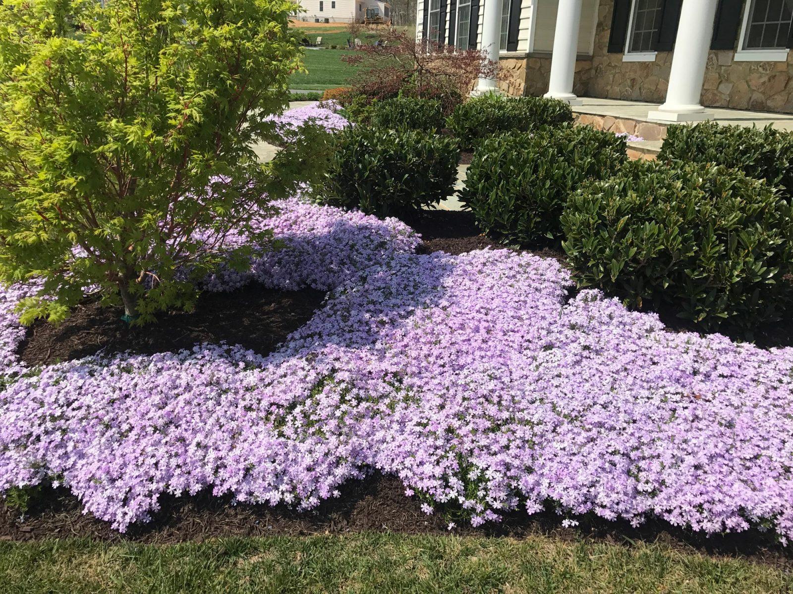 Landscape Maintenance in Glenwood, MD