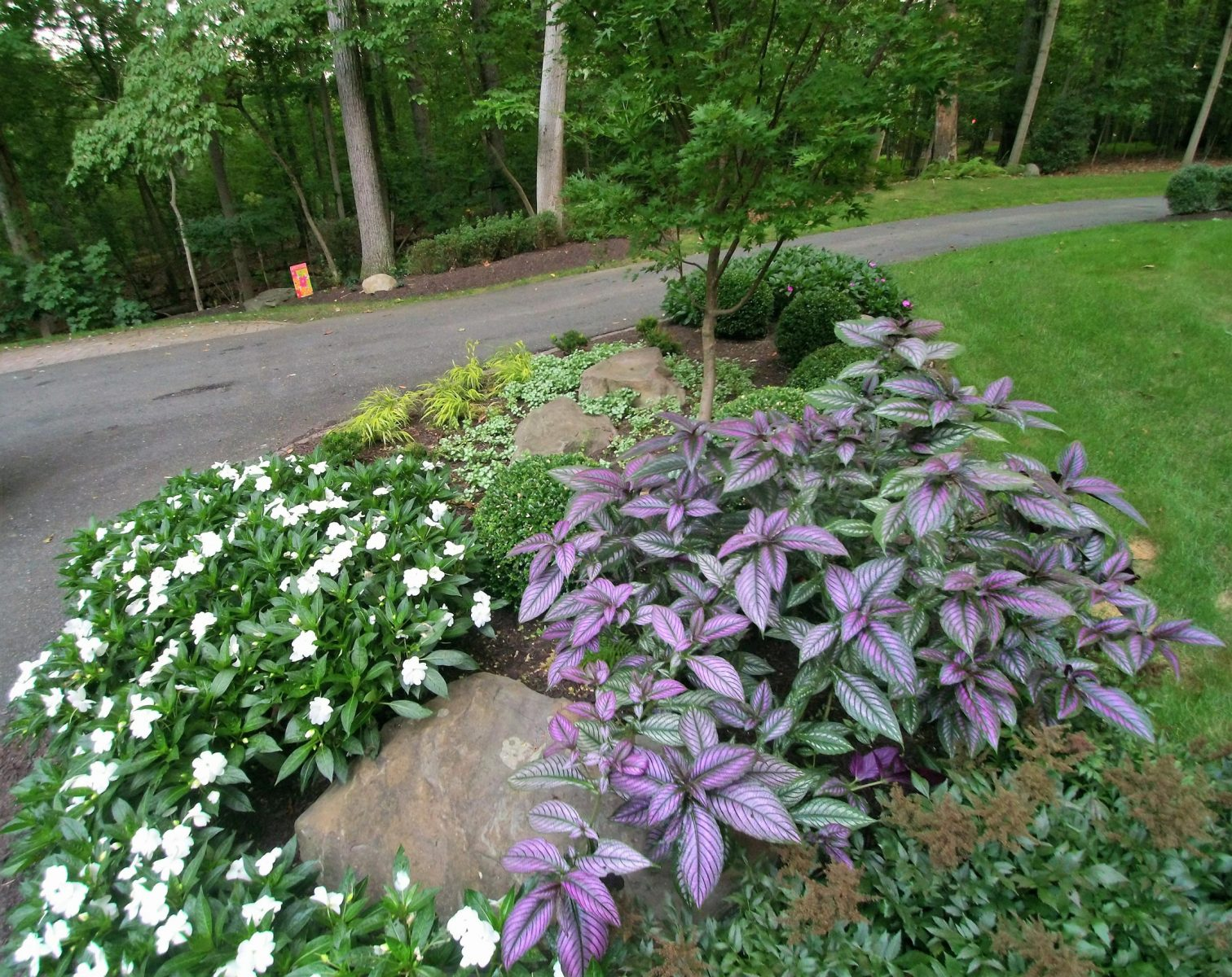 Landscaping Services in Dayton, MD