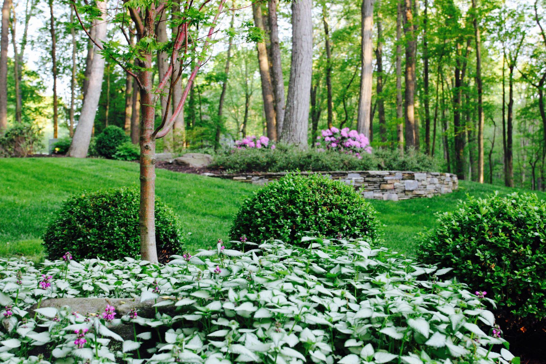 Landscape Design in Sykesville