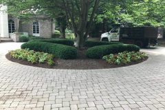 Landscape Maintenance in Ellicott City