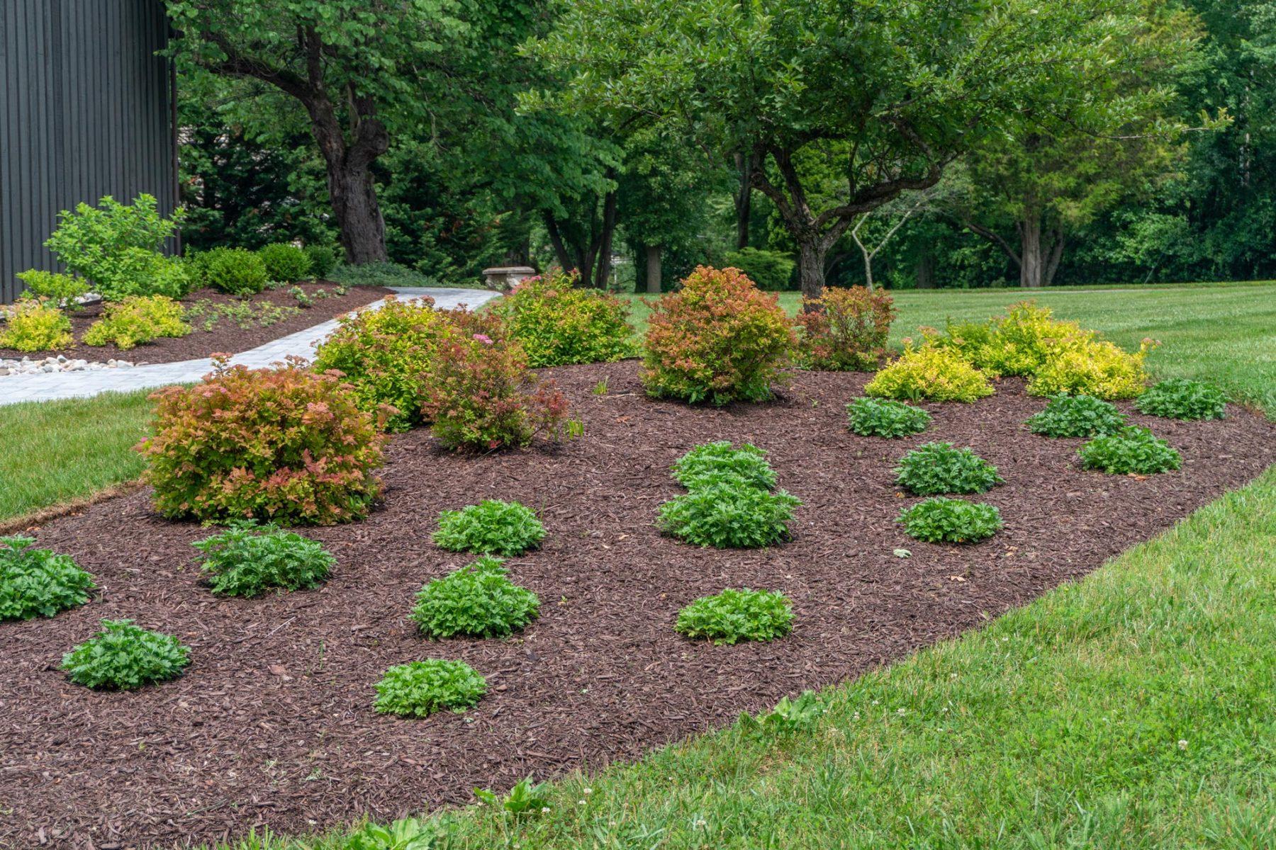 Landscape Installation in Dayton, MD