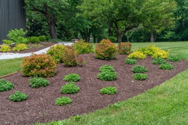 Landscape Installation in Dayton, MD