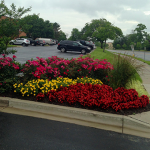 Commercial landscaping design for Glenwood businesses