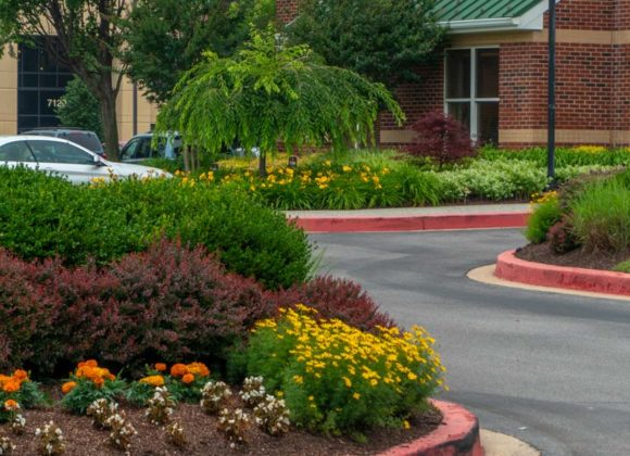 Commercial landscaping in Glenwood, MD