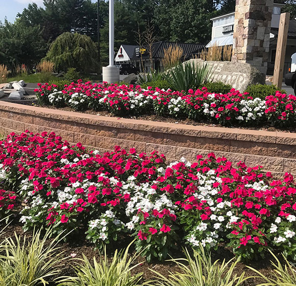 Landscaping Services in Ellicott City, Sykesville, Glenwood MD, Glenelg