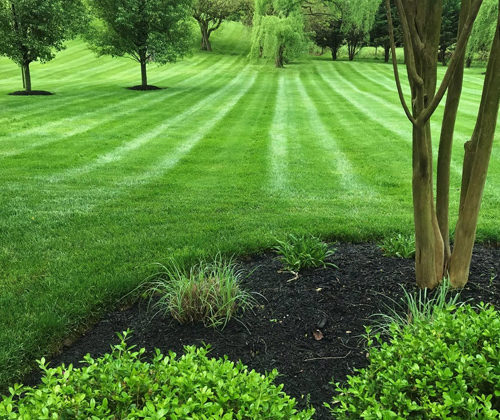 Residential Landscaping in Ellicott City