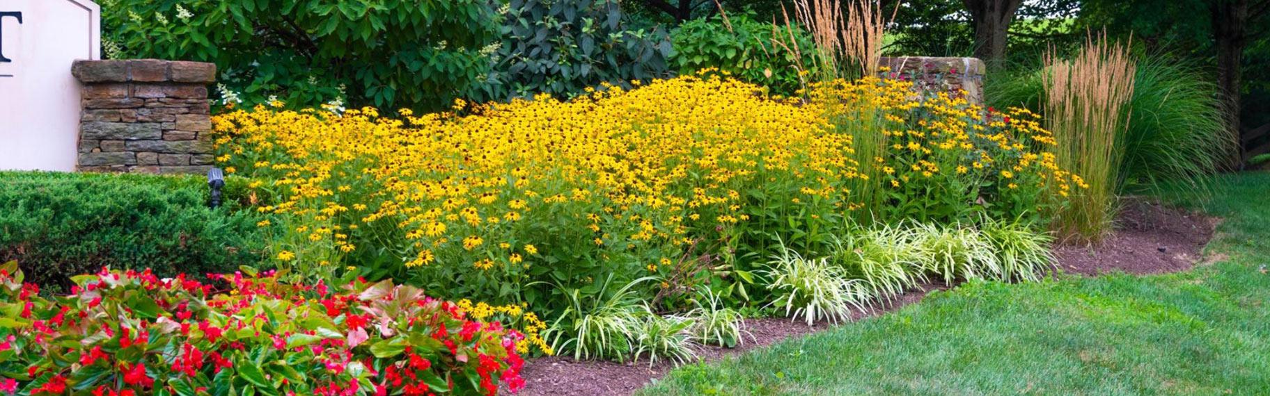 HOA Landscaping in Clarksville, Howard County, Glenelg, Glenwood